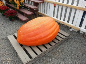 It's the Big Pumpkin, Charlie Brown!